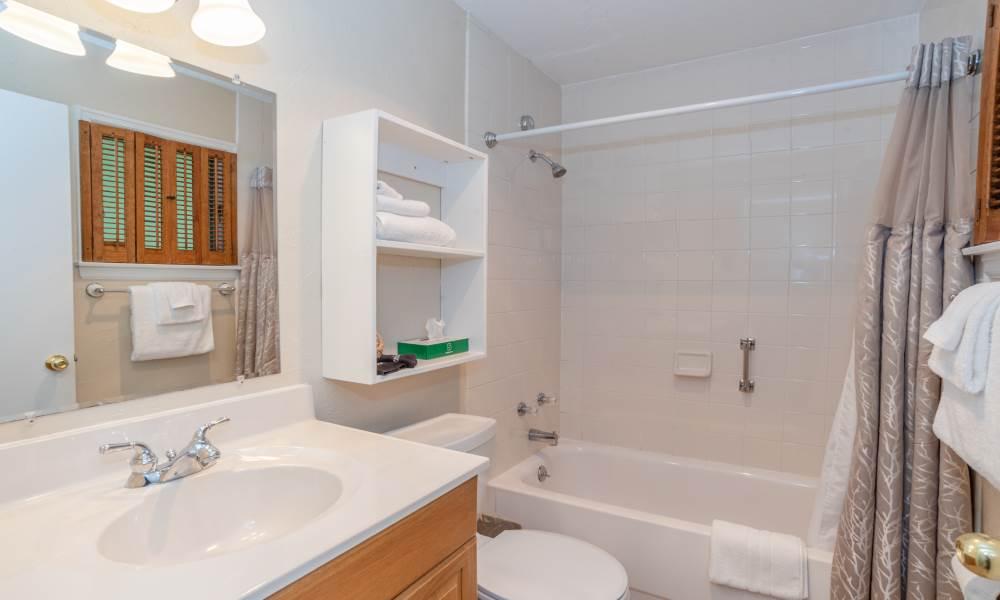 Lodge King Courtyard 1st Floor - Room 102 Bathroom